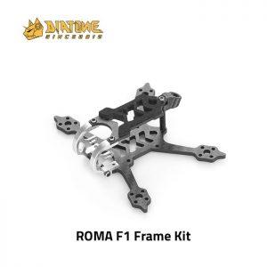 Diatone Roma F1 Frame